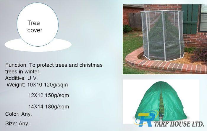 Tree cover-.jpg