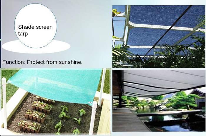 Shade sreen tarp-.jpg