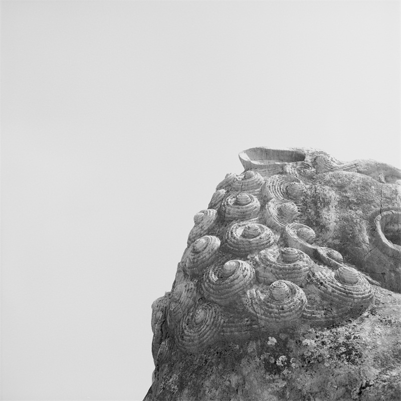 57_Stone_Head_石矶_2013.jpg