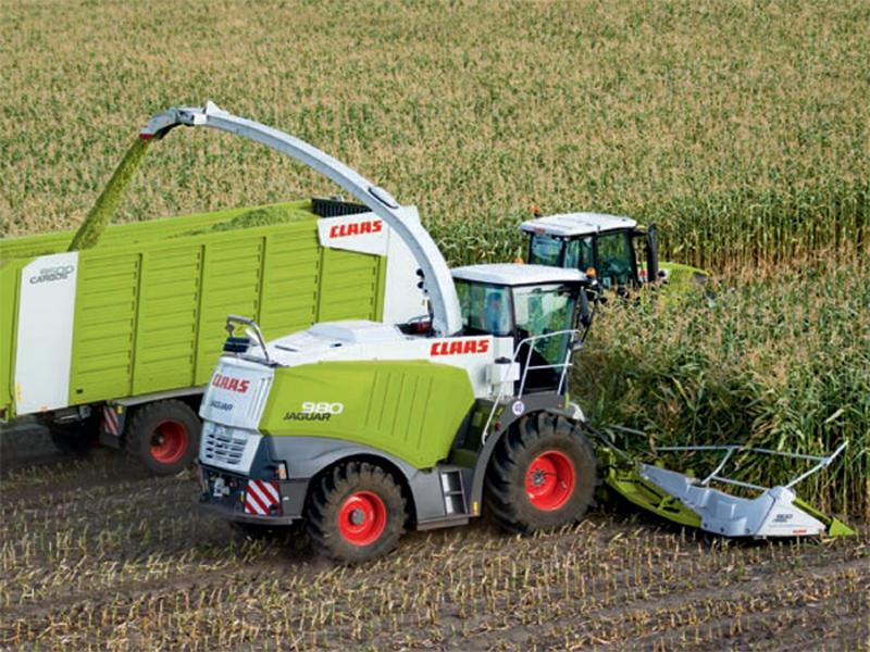 原料1--玉米收割2.jpg