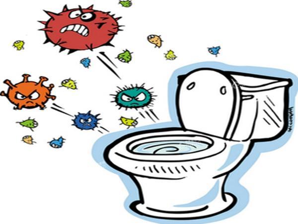 马桶座圈的细菌