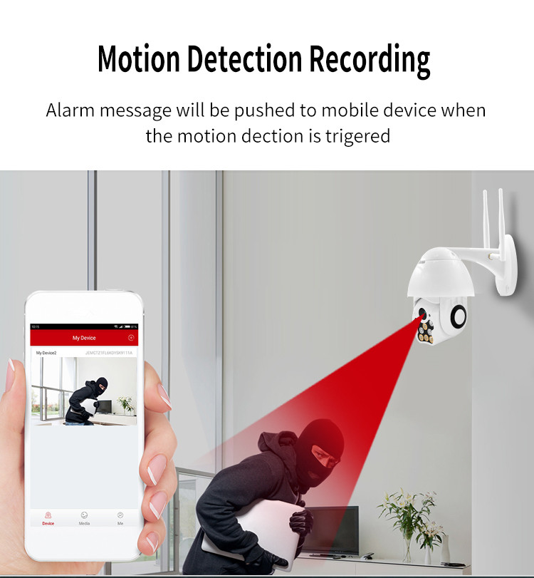 Motion Detection Recording
